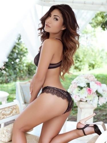 Sex ad by escort Elina (22) in Verona - Foto: 1
