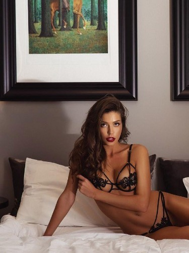 Sex ad by kinky escort Diana (23) in Milano - Foto: 1